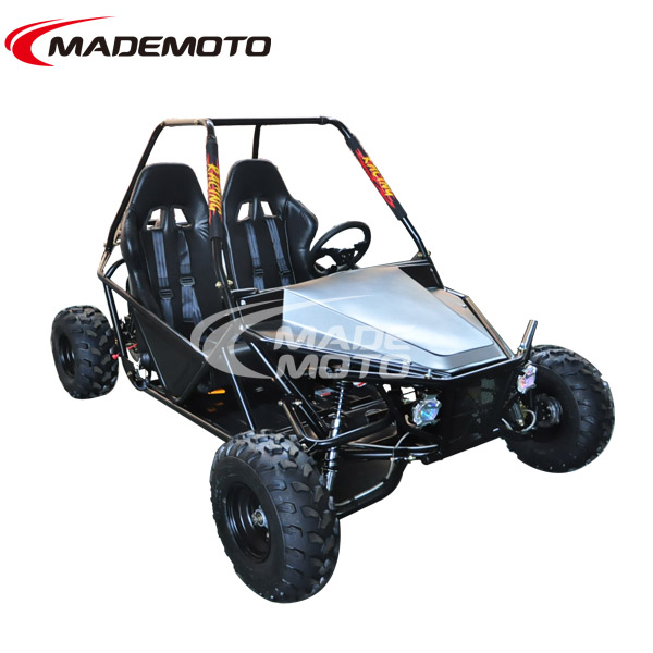 New 150cc 4 stroke go kart with 2 seats, automatic with reverse GY6 Engine